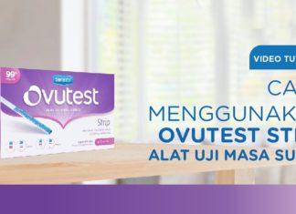cara menggunakan ovutest
